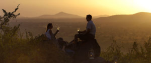 experience-food-wine-hero-joys-camp-sundowner-2000x837-300x126